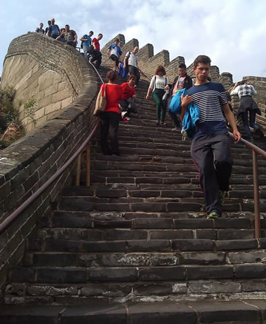 Cyclocross riders fresh off a long flight love steep stairs